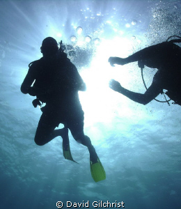 A helping hand. Local Scuba Instructor assists first time... by David Gilchrist 